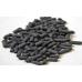 Lifegard Pelletized Activated Carbon 28 oz