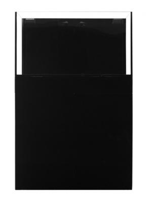 JBJ Rimless Flat Panel AIO 65 Gal. Aquarium and Black Stand