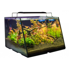 LIFEGARD® FULL VIEW Aquarium with Back Filter 5 Gallon