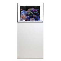 Waterbox Platinum Reef 70.2 System White