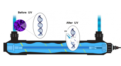 Ultraviolet Sterilizers