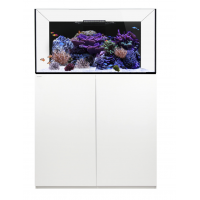 Waterbox Platinum Reef 100.3 System White