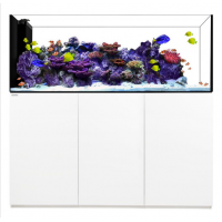 Waterbox Crystal Reef Peninsula 7226 White