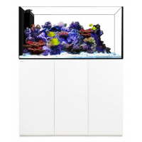 Waterbox Crystal Reef Peninsula 5526 White