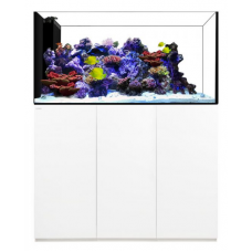 Waterbox Crystal Reef Peninsula 6026 White