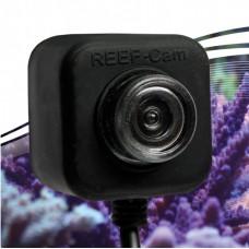 IceCap REEF-Cam