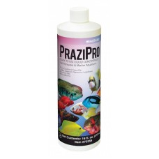 PraziPro Parasite Treatment - Hikari 16oz